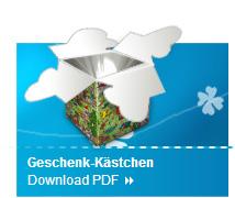 """Wimmelbild """"Geschenk-Kästchen"""" Basteltipp 4"""
